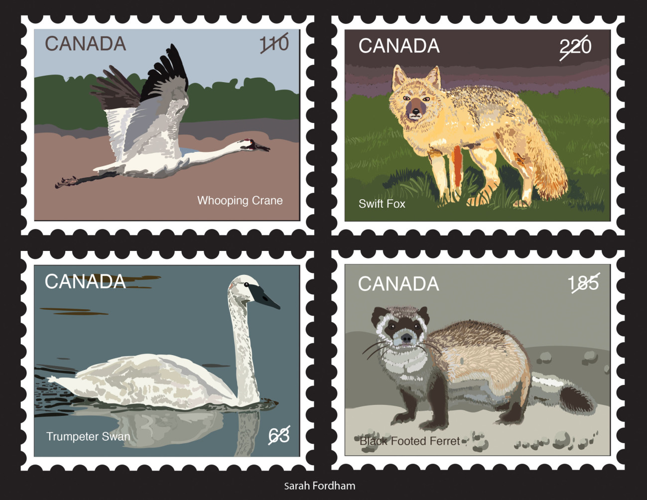 Canadian Wildlife Stamps Illustration