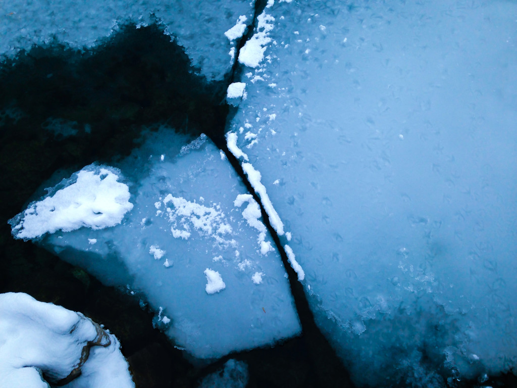 Snow-Covered Ice Floes V